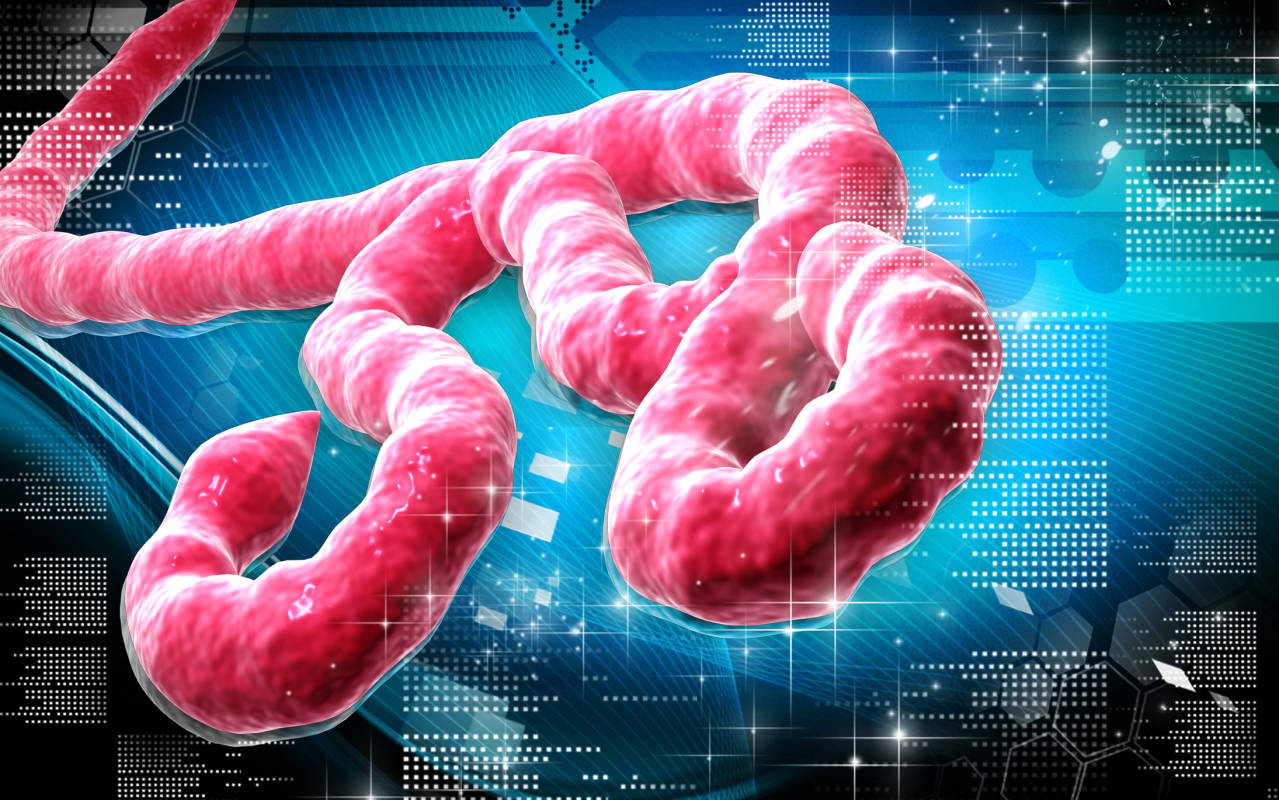 Unfortunately Because We Have To: Part 1 – Ebola