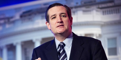 best choice for ted cruz