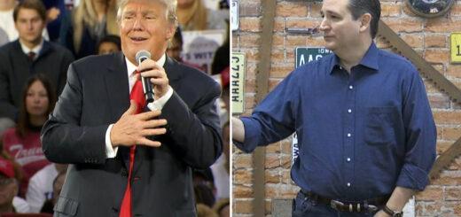 hit Ted Cruz