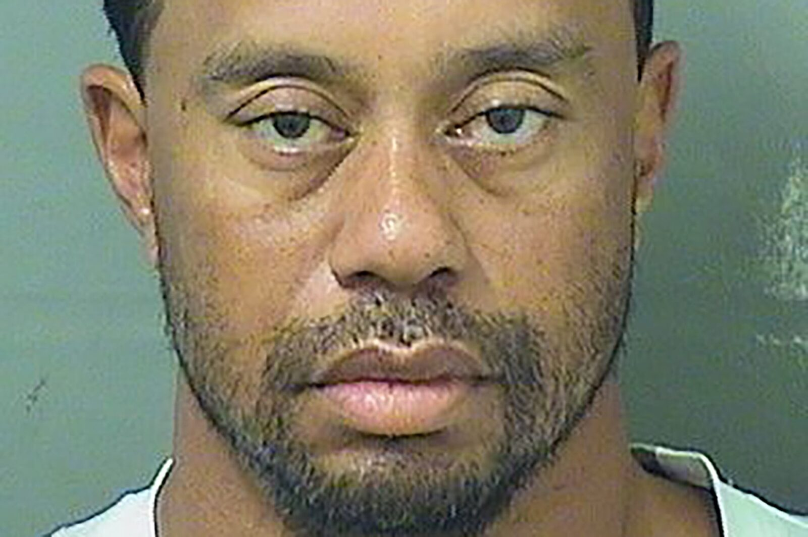 Tiger Woods Is Probably Owed An Apology By All Of Us